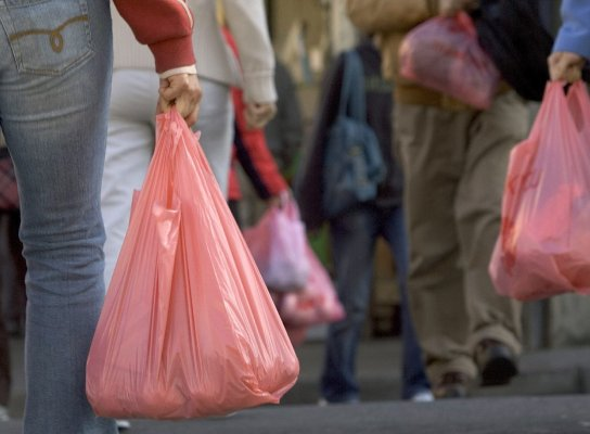 chhattisgarh to ban use of plastic carry bags from next year