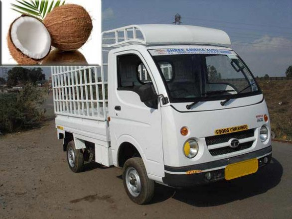 indian scientists running vehicles with coconut oil