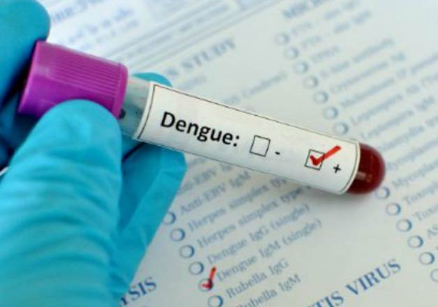 dengue eidempic likely to be more severe next year