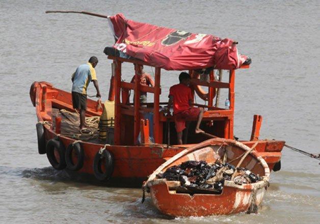 pakistan apprehends 12 boats 65 fishermen off gujarat coast