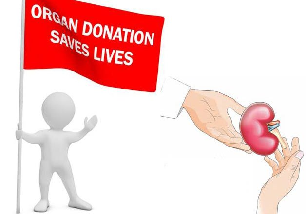 18 month old saves two becomes youngest deceased donor of