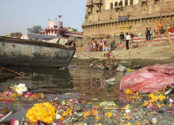 sc asks ngt to act against industrial units polluting ganga