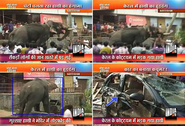 kerala aranmula temple elephant turns violent damages cars