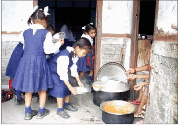 tadpole found in mid day meal at up school