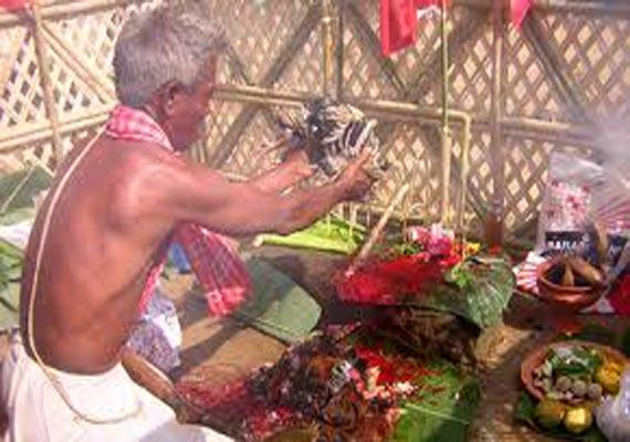 traditional ker puja celebrated in tripura