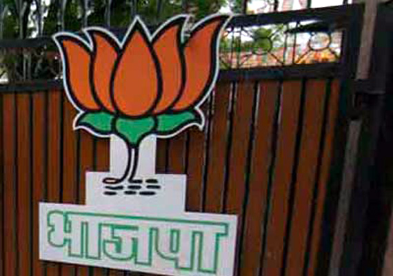 bjp woos dmdk and pmk for 2014 polls