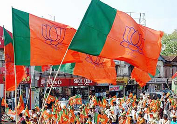 bjp shines in up local body polls cong fails to open account