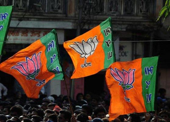 bjp eyeing fresh delhi assembly polls in february
