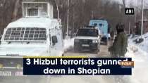 3 Hizbul terrorists gunned down in Shopian