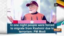 In one night people were forced to migrate from Kashmir due to terrorism: PM Modi