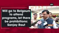Will go to Belgaum to attend programs, let there be prohibitions: Sanjay Raut
