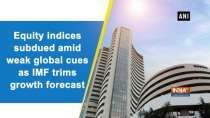 Equity indices subdued amid weak global cues as IMF trims growth forecast