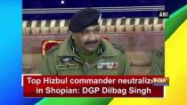 Top Hizbul commander neutralized in Shopian: DGP Dilbag Singh