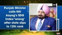Punjab Minister calls Niti Aayog