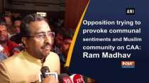 Opposition trying to provoke communal sentiments and Muslim community on CAA: Ram Madhav