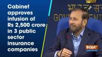 Cabinet approves infusion of Rs 2,500 crore in 3 public sector insurance companies