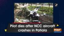 Pilot dies after NCC aircraft crashes in Patiala