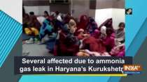 Several affected due to ammonia gas leak in Haryana