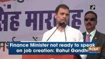 Finance Minister not ready to speak on job creation: Rahul Gandhi