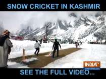 Youngsters from Kashmir host snow cricket tournament to promote tourism