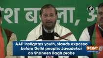 AAP instigates youth, stands exposed before Delhi people: Javadekar on Shaheen Bagh probe