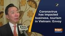 Coronavirus has impacted business, tourism in Vietnam: Envoy