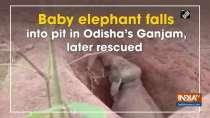 Baby elephant falls into pit in Odisha