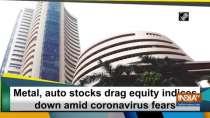 Metal, auto stocks drag equity indices down amid coronavirus fears