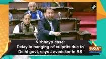 Nirbhaya case: Delay in hanging of culprits due to Delhi govt, says Javadekar in RS