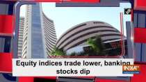 Equity indices trade lower, banking stocks dip