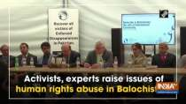 Activists, experts raise issues of human rights abuse in Balochistan