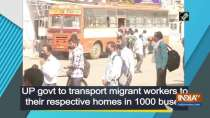 UP govt to transport migrant workers to their respective homes in 1000 buses
