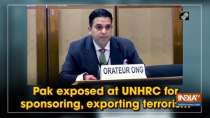 Pak exposed at UNHRC for sponsoring, exporting terrorism