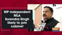 MP independent MLA Surendra Singh likely to join cabinet