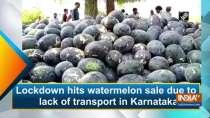 Lockdown hits watermelon sale due to lack of transport in Karnataka