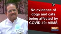 No evidence of dogs and cats being affected by COVID-19: AIIMS