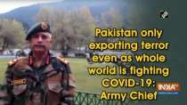 Pakistan only exporting terror even as whole world is fighting COVID-19: Army Chief
