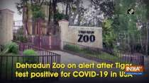 Dehradun Zoo on alert after Tiger test positive for COVID-19 in USA