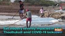 Salt industry severely impacted in TN