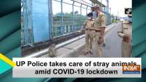 UP Police takes care of stray animals amid COVID-19 lockdown