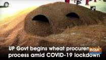 UP Govt begins wheat procurement process amid COVID-19 lockdown
