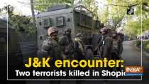 J and K encounter: Two terrorists killed in Shopian