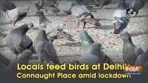 Locals feed birds at Delhi