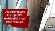 Leopard enters in Gujarat