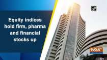 Equity indices hold firm, pharma and financial stocks up