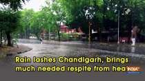 Rain lashes Chandigarh, brings much needed respite from heat