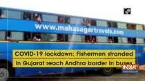 COVID-19 lockdown: Fishermen stranded in Gujarat reach Andhra border in buses