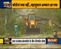 Cyclone Amphan: Trees uprooted in Paradip as wind speed touches 102 km/ph