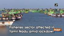Fisheries sector affected in Tamil Nadu amid lockdown