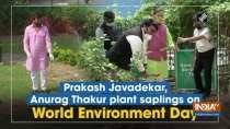 Prakash Javadekar, Anurag Thakur plant saplings on World Environment Day